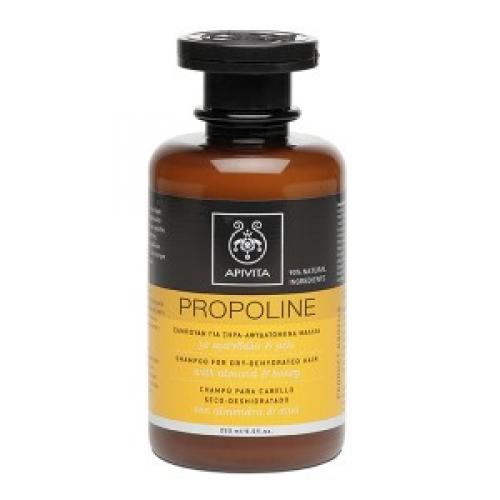 APIVITA Σαμπουάν για Ξηρά-Αφυδατωμένα Μαλλιά,με αμύγδαλο & μέλι,250ml